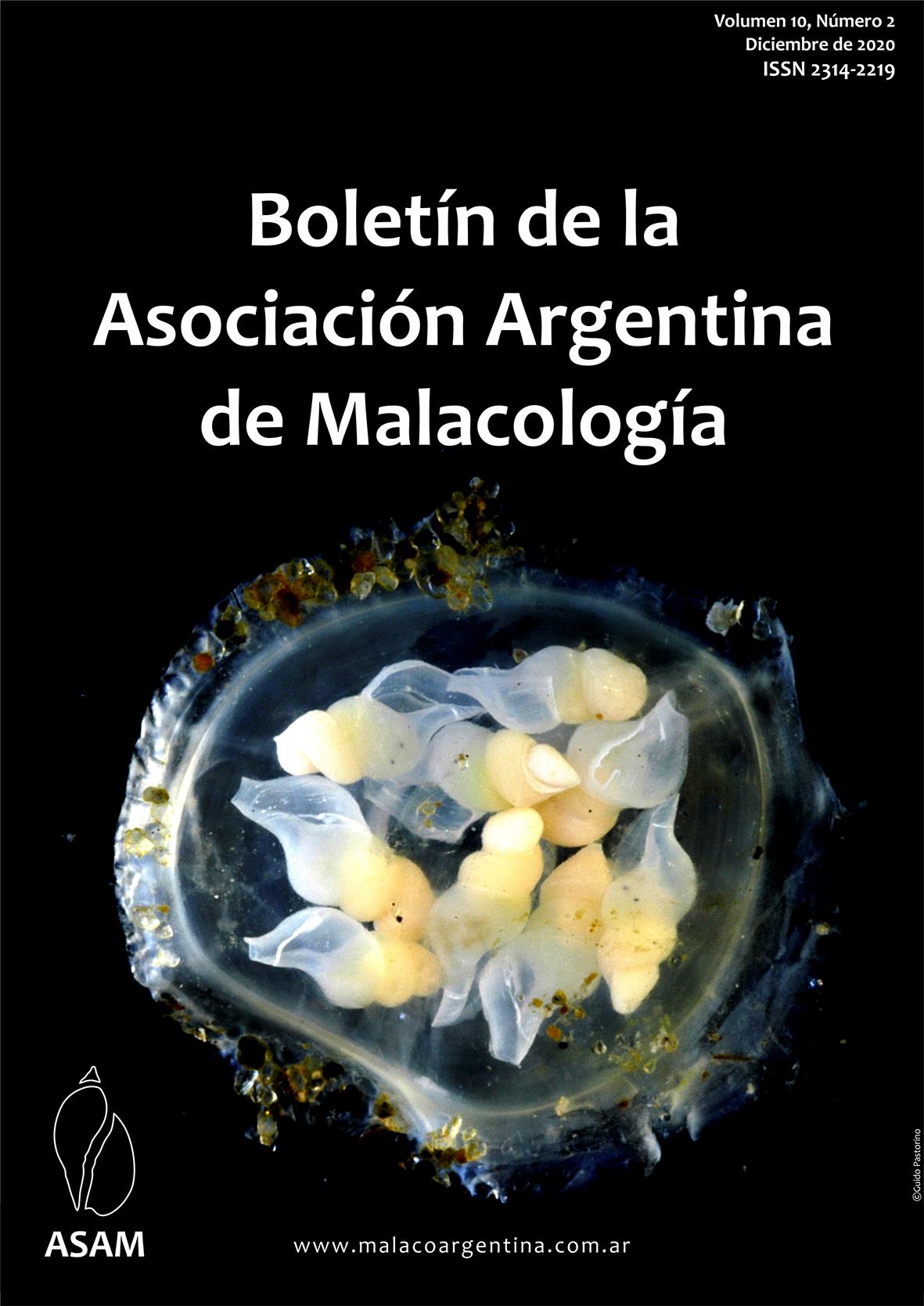 http://malacoargentina.com.ar/blog/wp-content/uploads/2020/12/Tapa-10-2.jpg